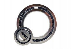 Back-Up Bearing