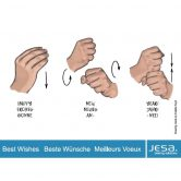 JESA supports the learning of Sign Language